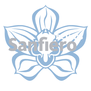 Sanfiero Cymbidiums